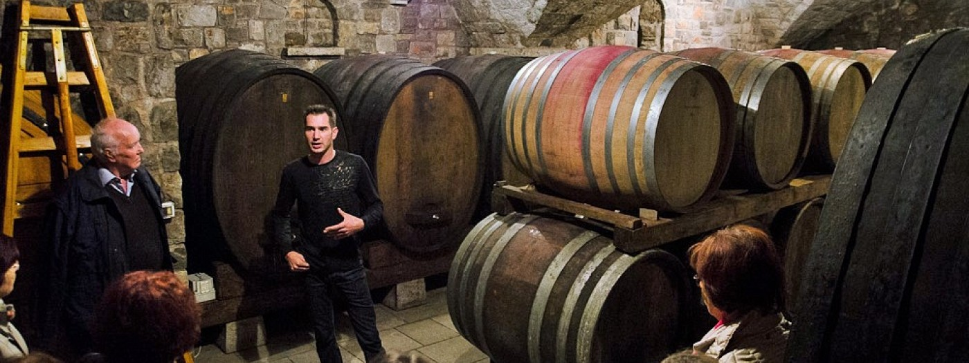 Open Day at wine cellars along the Karst Wine Route