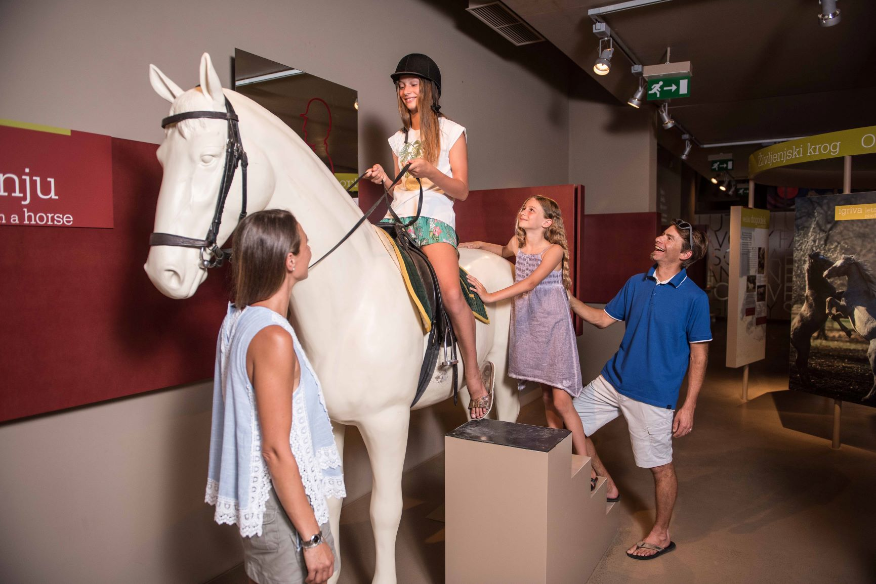 Lipikum – Museum of the Lipizzan Horse in Lipica