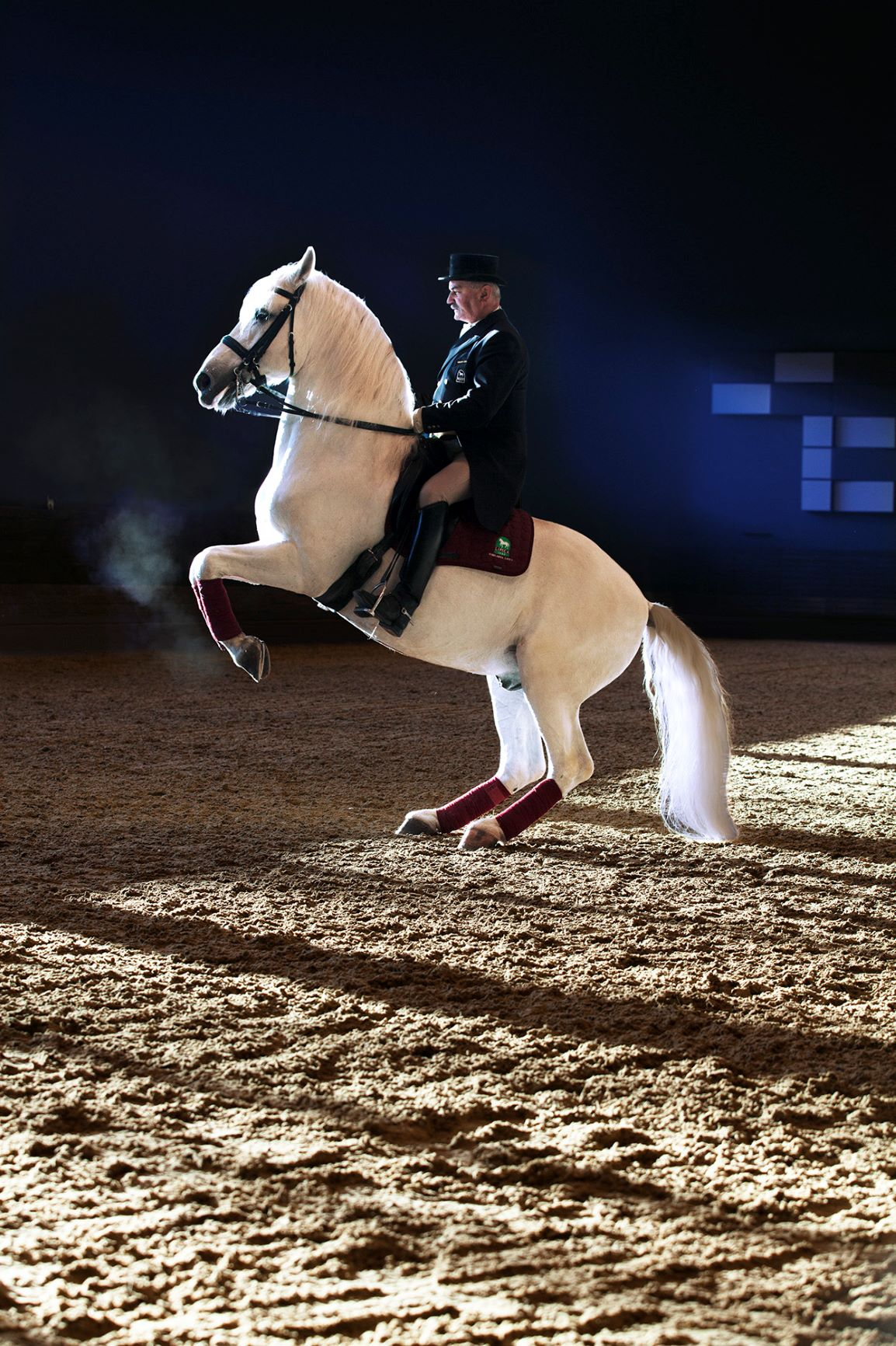 """A Tale of Lipica Show"", with Lipizzan horses"