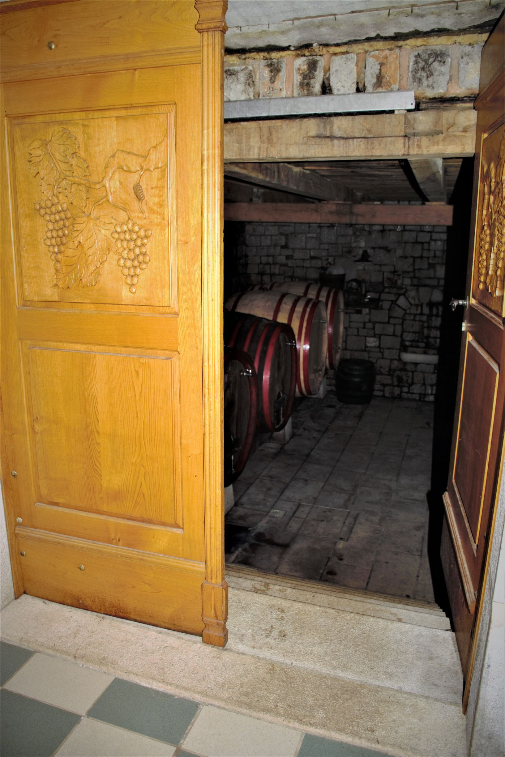 A guided tasting of wines and a visit to a wine cellar